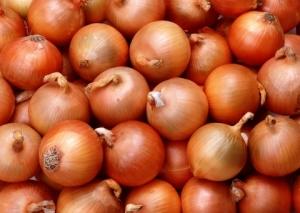 onions_0