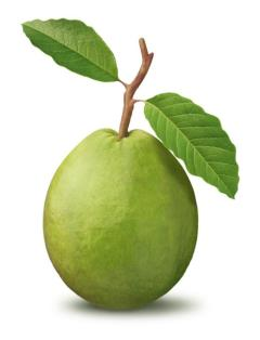 Fruit of the week guava ayeshas kitchen ccuart Image collections